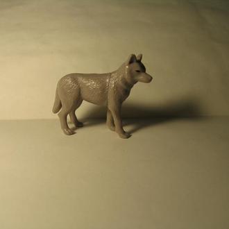 Волк животные  TR002A