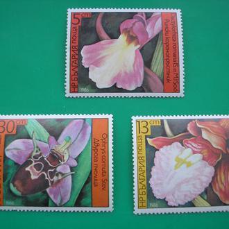 Болгария  Цветы   MNH
