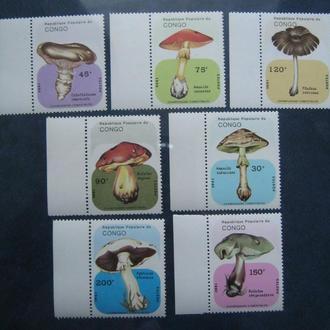 флора  растения  грибы конго на т