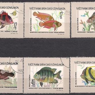 Вьетнам, 1976 г., фауна, тропические рыбы