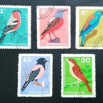 почтовая марка Птицы Болгария