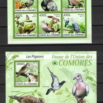 Коморы 2009 ** Фауна Птицы Голуби БЛ+МЛ MNH