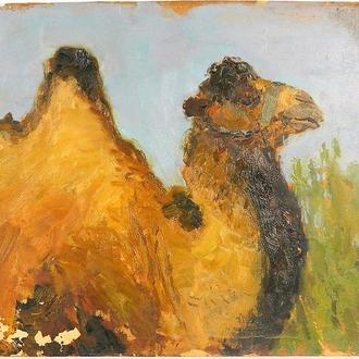 Автор Искам В. ,,Верблюд,, 1950 картон, масло. Размеры 29х41 см.