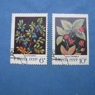 СССР 1982 год Флора, Цветы