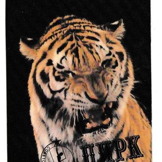Календарик 1985 Цирк, тигр ЛАМИНАТ