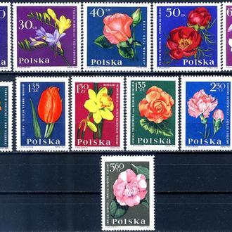 Польша. Цветы (серия)** 1964 г.