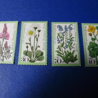 Флора Квіти Цветы Німеччина Германия **