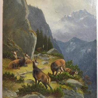 Müller. Mündien 1890. ,,Горные олени,, Холст, масло