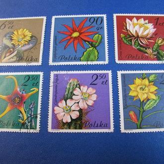 Флора Квіти Цветы Польща польша 1981