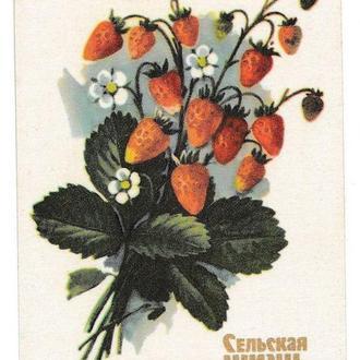 Календарик 1984 Пресса, газета Сельская Жизнь, флора, клубника