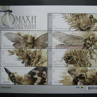 Украина фауна бабочки украина украина  т