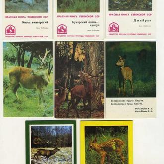Карманные календарики Животные 8 шт. (№1)