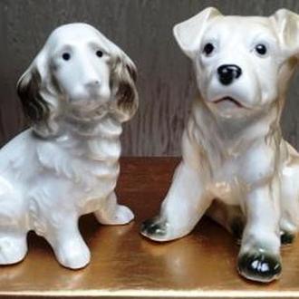 Собаки. Два щенка