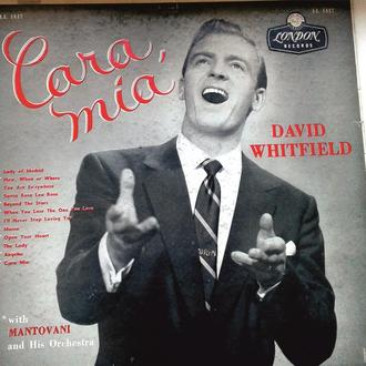 David Whitfield with Mantovani and his Orchestra and The Roland Shaw Orchestra - Cara mia