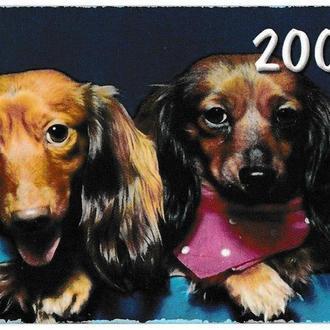 Календарик 2004 Собаки
