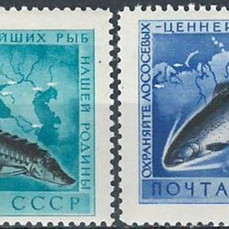 СССР-1959 охрана морской фауны, рыбы **