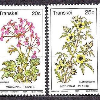 Транскей**, 1980 г., флора, цветы