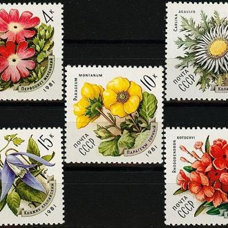 Почтовая марка(Цветы украинских Карпат.)