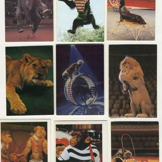 Карманные календарики Цирк 9 шт. (№14)