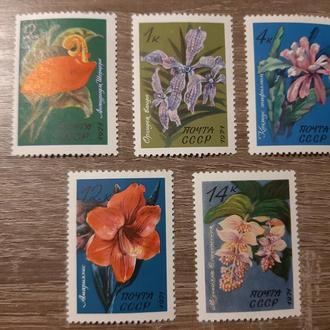 Марки СССР 1971г.Цветы