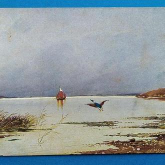 Охота. Утка на взлете. Парусник. открытка до 1917 г