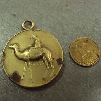 медаль египетско-суданское королевство