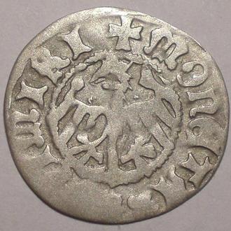 Полугрош Казимира IV
