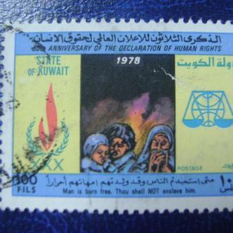 Кувейт. Декларация прав человека