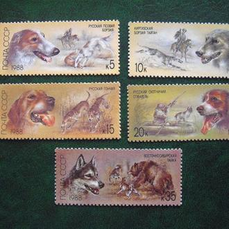 1988г.Охотничьи собаки.MNH
