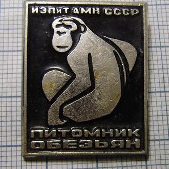 питомник обезьян, ИЭПиТ АМН СССР
