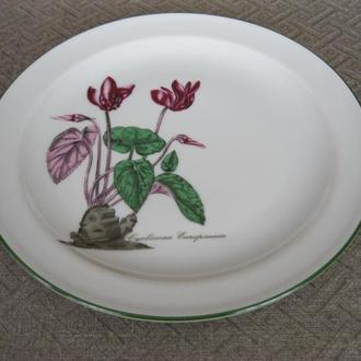Очаровательная тарелка ! Bavaria Seltmann Weiden!W.Germany! 3