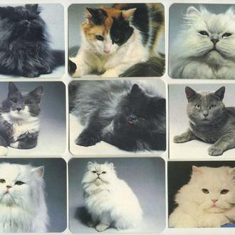Карманные календарики Животные Кошки 9 шт. (№1)