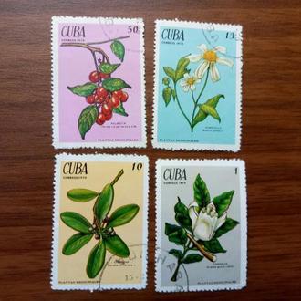 Куба флора 1970