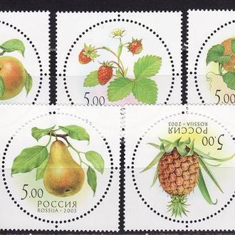 Россия 2003 Фрукты Флора Ягоды 5 марок с запахом**