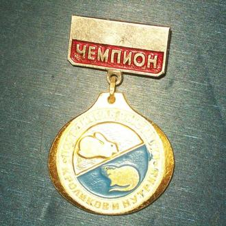 Чемпион победитель выставки кроликов и нутрий   П11
