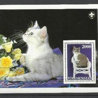 Туркменистан 199? фауна коты бл.**