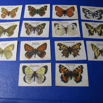 Фауна Метелики Бабочки Спичечные этикетки для спичек 14 шт