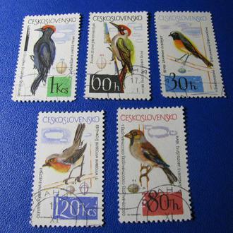 Фауна Птахи Чехословаччина