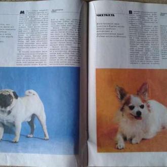 журнал Декоративные собаки 1989г.