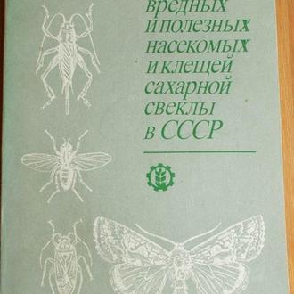 Определитель насекомых сахарной свеклы