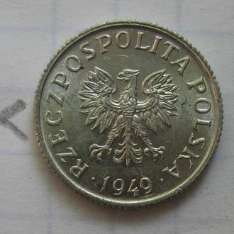 ПОЛЬША, 1 грош 1949 года (в коллекцию!).