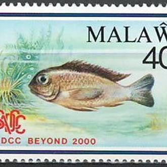 фауна Малави-1990 рыба