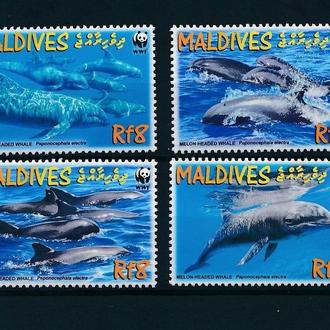 Мальдивы фауна MNH