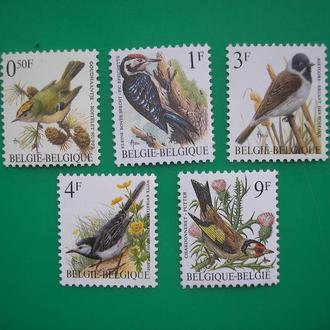 Бельгия Птицы Фауна MNH