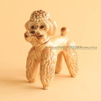 Фарфоровая статуэтка Собака Пудель SylvaC Англия 1940-1946гг