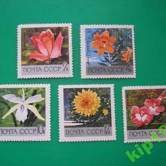 СССР. 1969 Цветы MNH флора