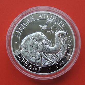 Сомали Слон 100 шиллингов 2018
