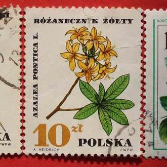 Марки Польші. Флора.