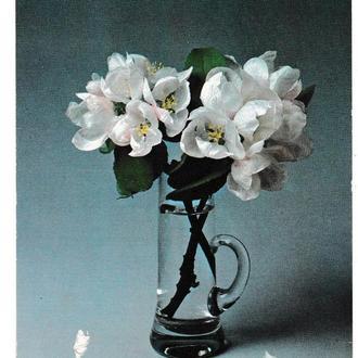 Открытка Чехословакия Цветы
