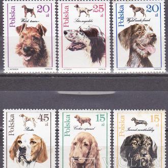 Польша собаки MNH